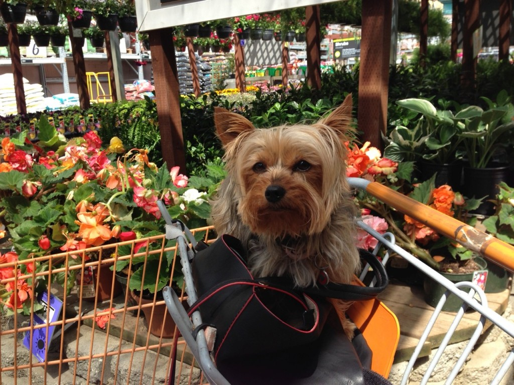 Phina at the nursery