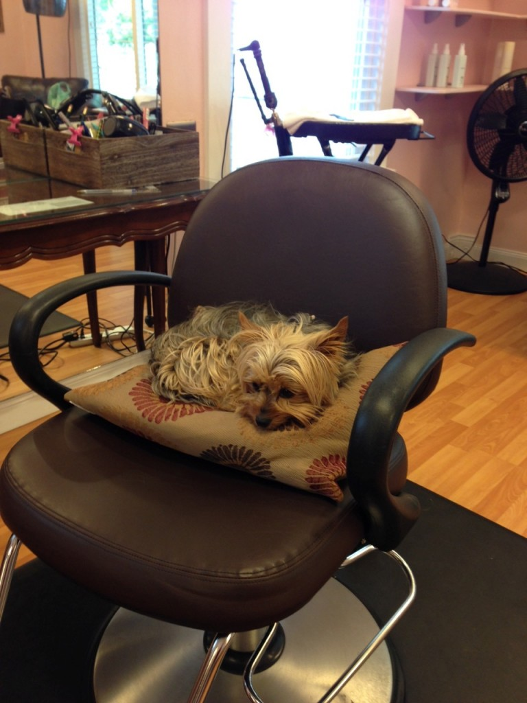 Phina at the hair salon